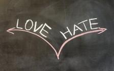"""因为""""他""""  我是又爱又恨"""