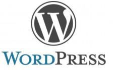 WordPress新手入门建站教程之 搭建WP站点的必备条件!