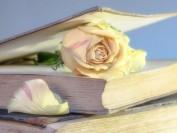 这些电子书引流的技巧你知道吗?