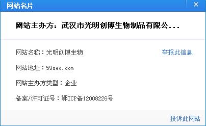 武汉seo疯子的网站名片