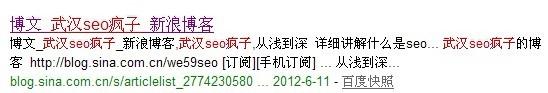 武汉seo疯子的新浪博客